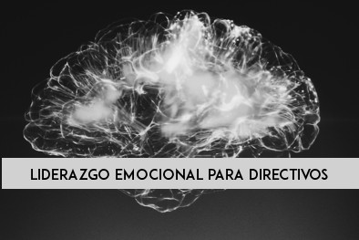LIDERAZGO EMOCIONAL PARA DIRECTIVOS