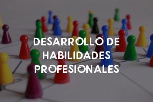 DESARROLLO DE HABILIDADES PROFESIONALES